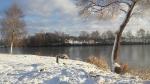 Zima 2016